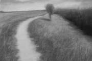 c34-W_Knapp_TrailRodmans