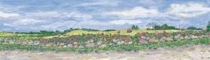 "Jessie Edwards, ""Haybales and Roses - Pilot Hill"""
