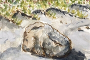 """Jessie Edwards, """"Beach Rock"""", pen and ink with watercolor, matted, $150.00"""