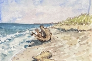 """Jessie Edwards, """"Gnarly Beach Wood"""", pen and ink with watercolor,  matted, $150.00"""